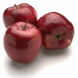 דיאטת Diet2all, דיאט-טו-אול, דיאטת קובי-דיאט, דיאטה, דיאטת אטקינס, דיאטת אשקוליות, דיאטת סוג הדם, דיאטת בריאות, דיאטת הכרוב, דיאטת דלת קלוריות, דיאטת הלחם, דיאטת חלבונים, דאטת הנקודות, דיאטת העוגיות, דיאטת פופקורן, , תזונה, דיאטה, הרזיה, חיטובים, השרירים, פיתוח גוף, חיטוב, תזונה ודיאטה, בריאות וכושר, סטרואידים, קובי עזרא, דיאטות, יוניברסל-נוטרישן, אופטימום, סופר נוטרישן, ספורטולוגיה, ישראל בודי, תזונת ספורט, פעילות גופנית, תוספי תזונה, יעקב עזרא, חלבונים, מי גבינה,דיאטות בריאות, דיאטה און ליין, דיאטה לפי סוג דם, דיאטה בהריון, דיאטה ים תיכונית, דיאטה חלבונים, הרזיה מהירה, חיטובים, פיתוח גוף, דיאטת אטקינס, קובי עזרא, דיאטות, תזונת ספורט, פעילות גופנית, תוספי תזונה, קיאטין, חלבונים דיאטה, דיאטת אטקינס, דיאטת אשקוליות, דיאטת סוג הדם, דיאטת בריאות, דיאטת הכרוב, דיאטת דלת קלוריות, דיאטת הלחם, דיאטת חלבונים, דאטת הנקודות, דיאטת העוגיות, דיאטת פופקורן,