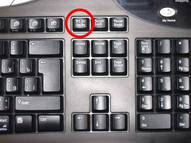 Как сделать так чтобы работала кнопка prt sc